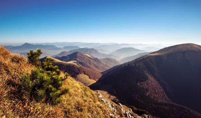 Сценарный взгляд холмов в падении, Словакии туманной горы стоковое изображение