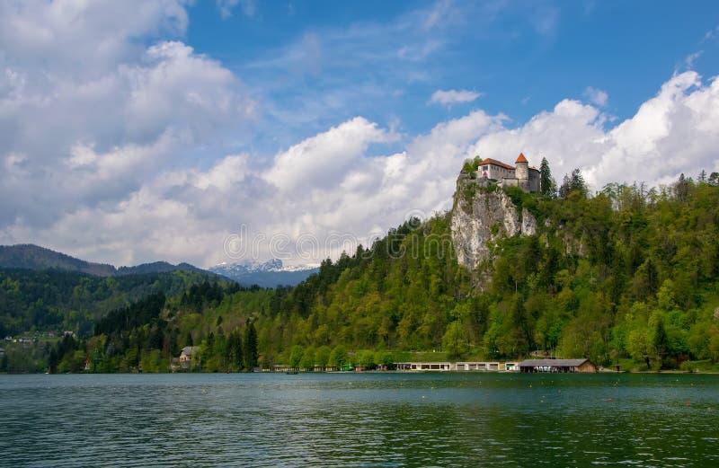 Сценарный вид на озеро кровоточил с замком на утесе и горах покрытых облаками на предпосылке на весеннем времени, Словении стоковое фото rf