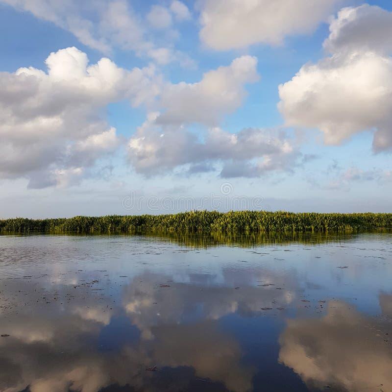 Сценарный вид на озеро против голубого неба стоковые фотографии rf