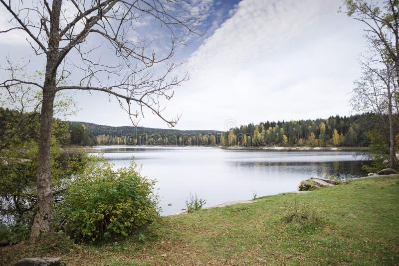 Сценарный вид на озеро против неба стоковое фото