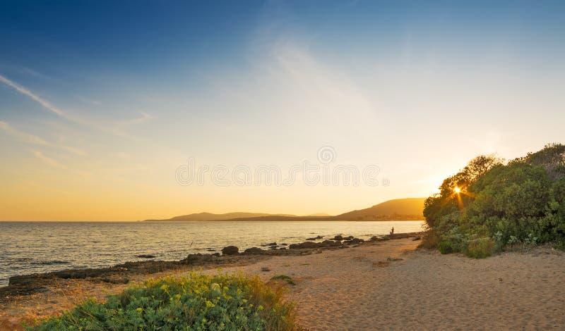 Сценарный заход солнца на пляже стоковое изображение rf