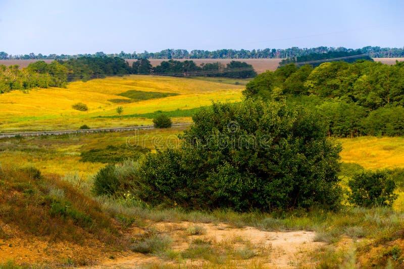 Сценарный красивый типичный сочный зеленый ландшафт с полями стоковые фотографии rf