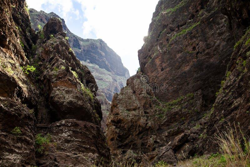 Сценарный ландшафт гор ущелья Masca, Тенерифе, канереечного Isla стоковое фото