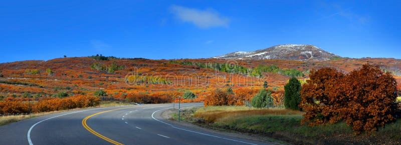 Сценарный путь 62 Колорадо высокий стоковые фотографии rf