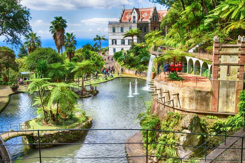 Сценарный сада дворца Monte тропического Фуншал, остров Мадейры, Португалия стоковое фото