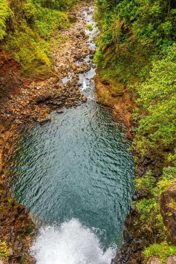 Сценарный тропический водопад на Мауи стоковая фотография rf