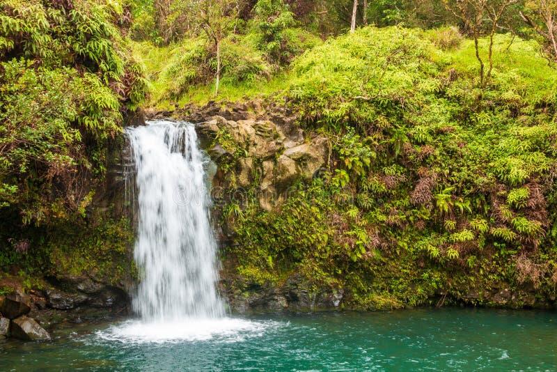 Сценарный тропический водопад около Ганы Мауи стоковое фото rf