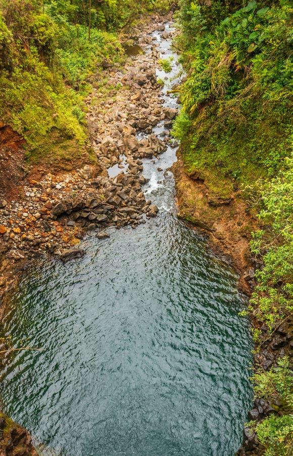 Сценарный тропический поток около Ганы Мауи стоковое фото