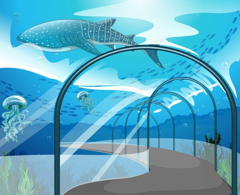 Сцена аквариума с морскими животными иллюстрация вектора
