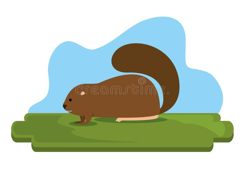 Сцена бобра канадская животная иллюстрация вектора