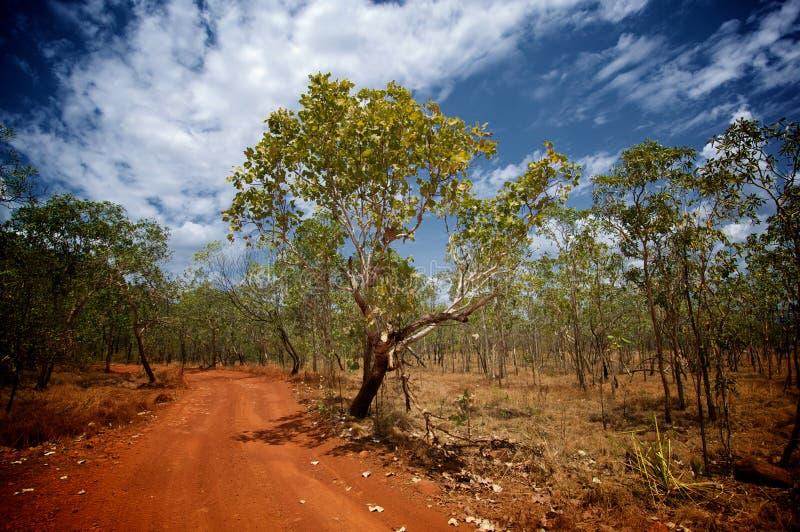 Сцена Буша австралийца стоковое фото