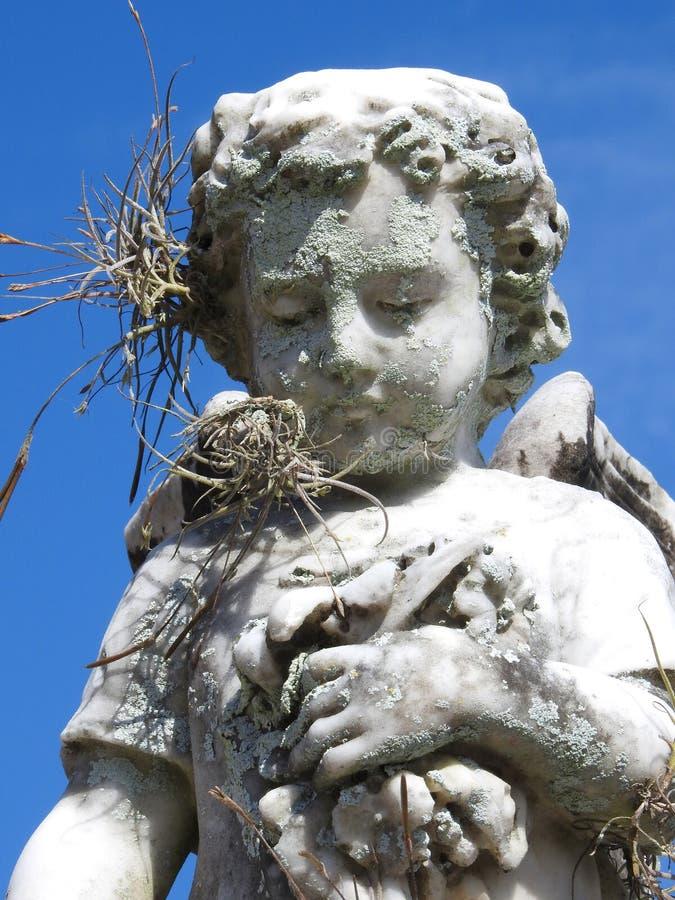 Сцена в погосте: конец-вверх od старая каменная статуя маленького ангела держа некоторые цветки стоковые фото
