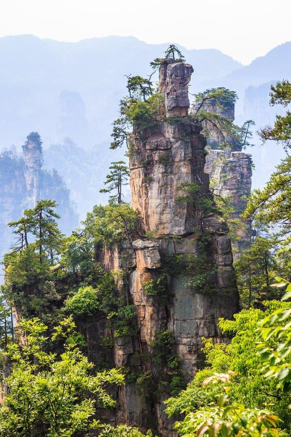 Сцена горы утеса в Zhangjiajie национальном Forest Park, Хунани стоковые фотографии rf