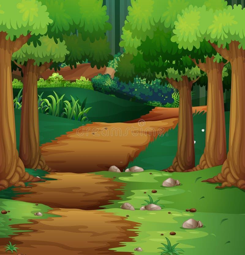 Сцена леса с грязной улицей в середине бесплатная иллюстрация