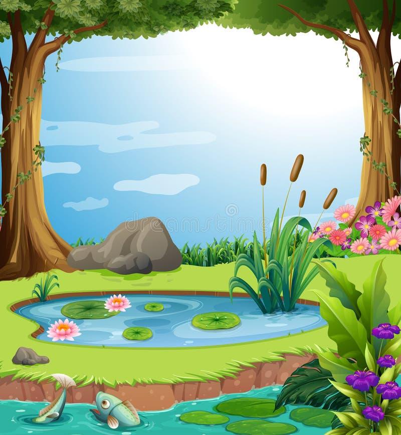 Сцена леса с рыбами в пруде иллюстрация вектора