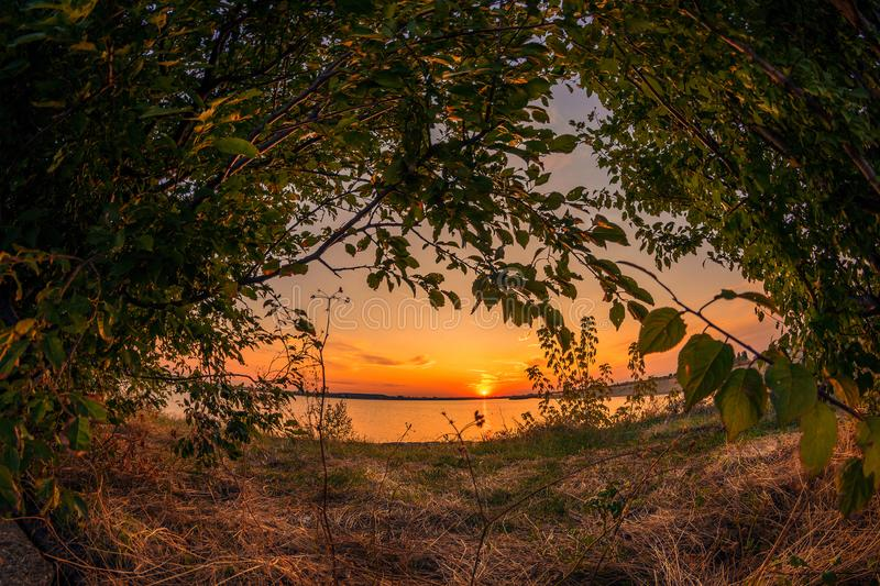 Сцена захода солнца обрамленная деревьями стоковое изображение