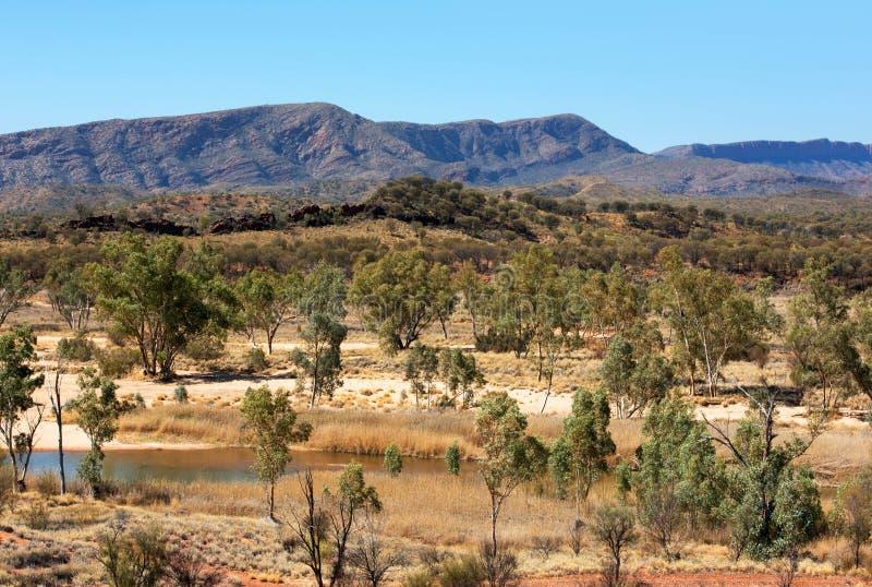 Сцена захолустья, северные территории, Австралия стоковое фото rf