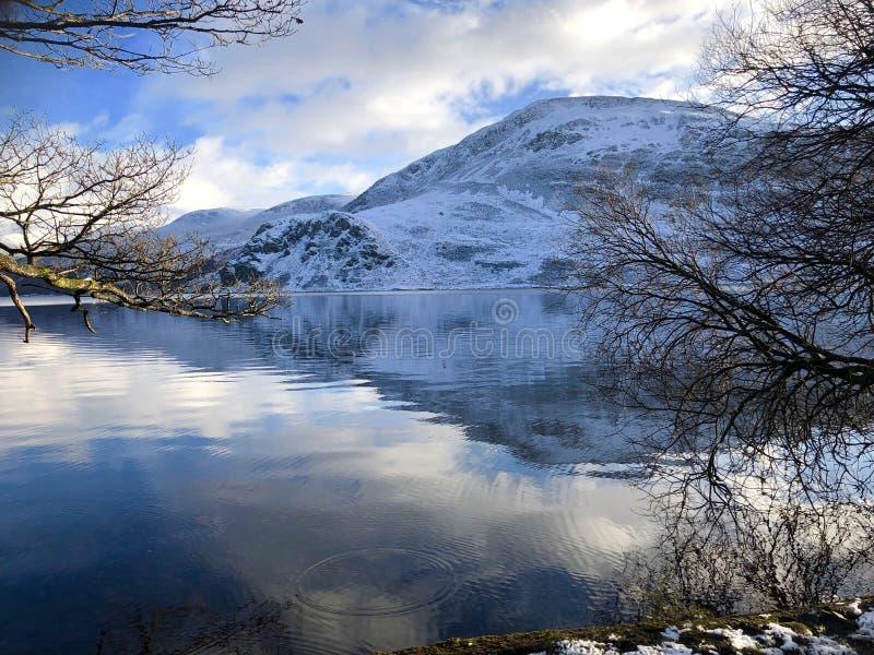 Сцена зимы озером стоковое изображение