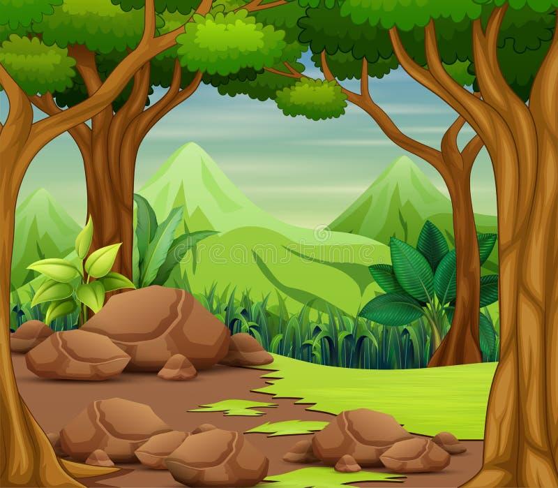 Сцена леса с деревьями и красивой предпосылкой ландшафта иллюстрация вектора