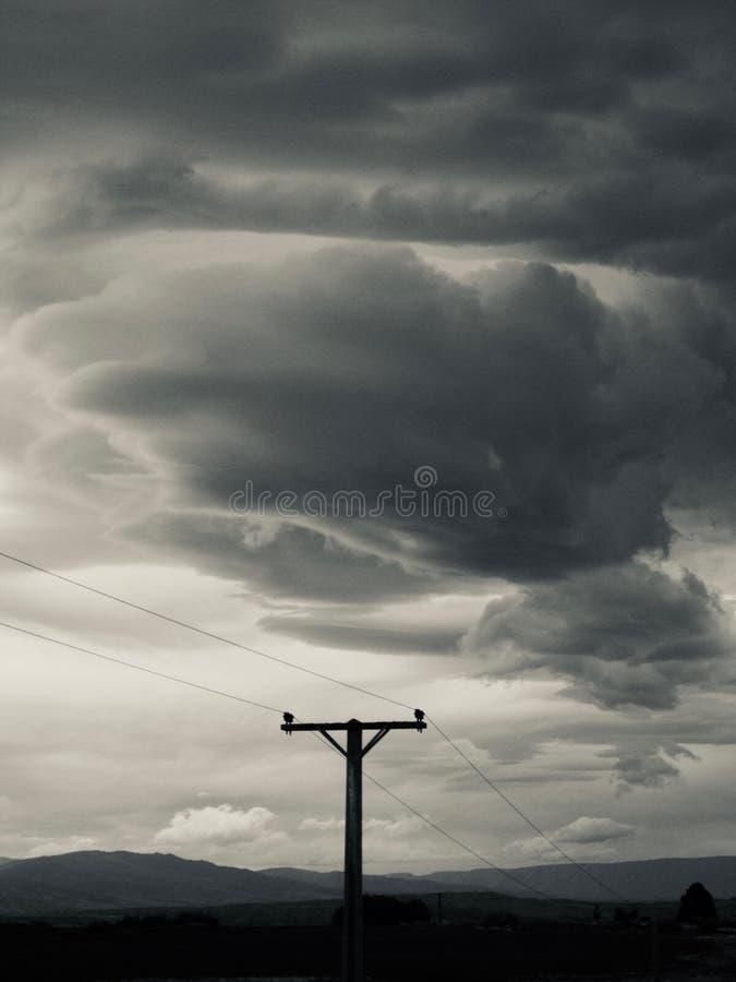 Сцена Новой Зеландии на шоссе стоковые изображения rf