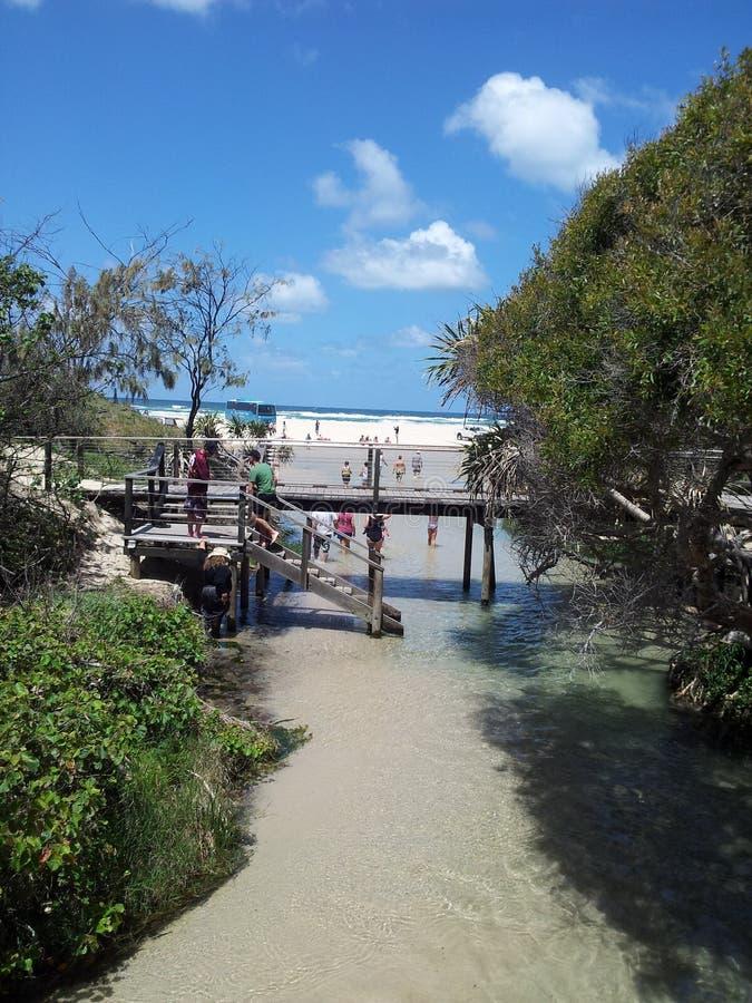 Сцена острова Frazer стоковое изображение rf