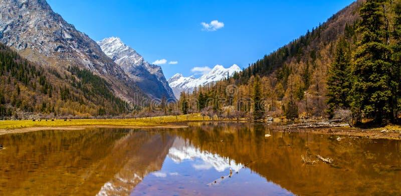 Сцена долины Changping горы Siguniang стоковые фотографии rf