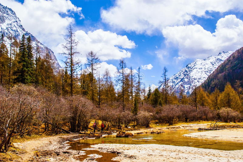 Сцена долины Changping горы Siguniang стоковые фото