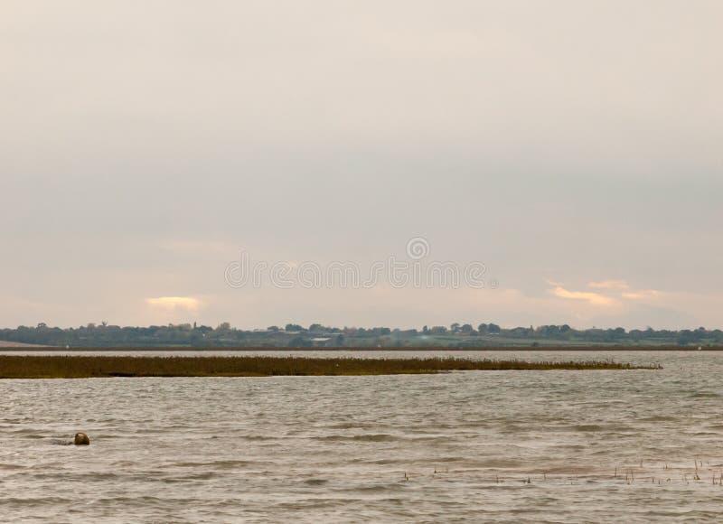 Сцена потока реки ландшафта вне воды overcast стоковые фотографии rf