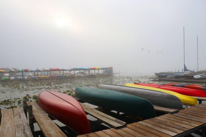 Сцена природы осени утра туманная стоковая фотография