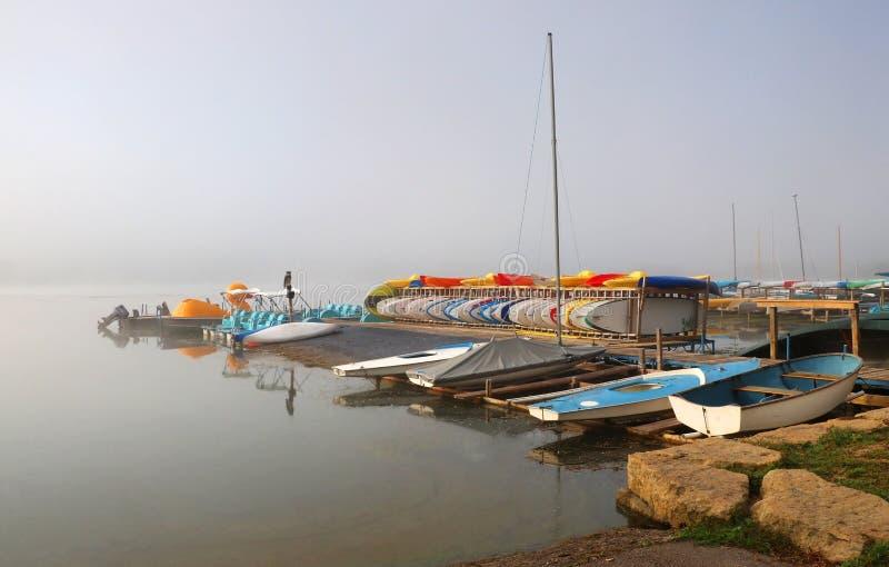 Сцена природы осени утра туманная стоковое фото rf