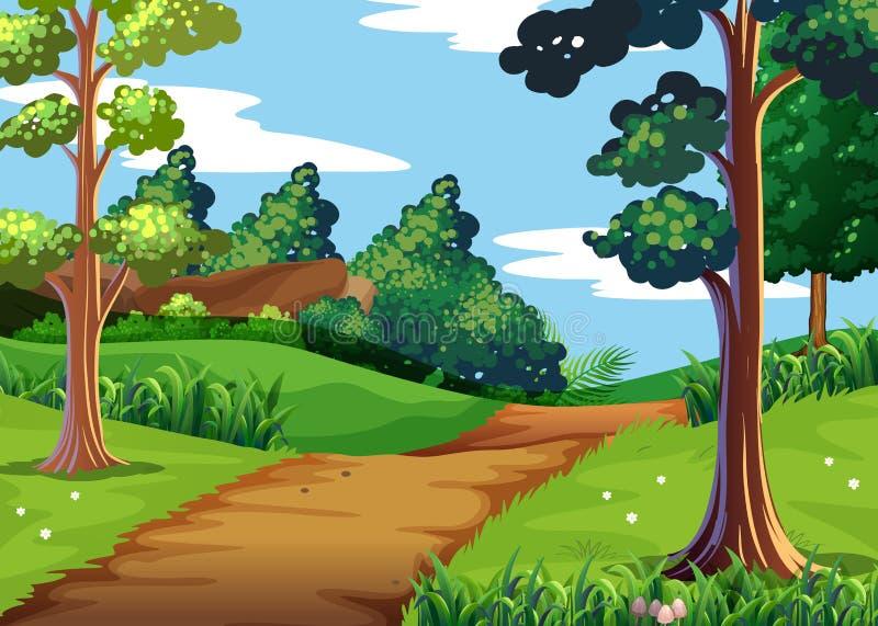 Сцена природы с лесом и идя следом иллюстрация штока