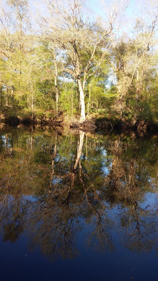 Сцена 6 реки стоковые фотографии rf
