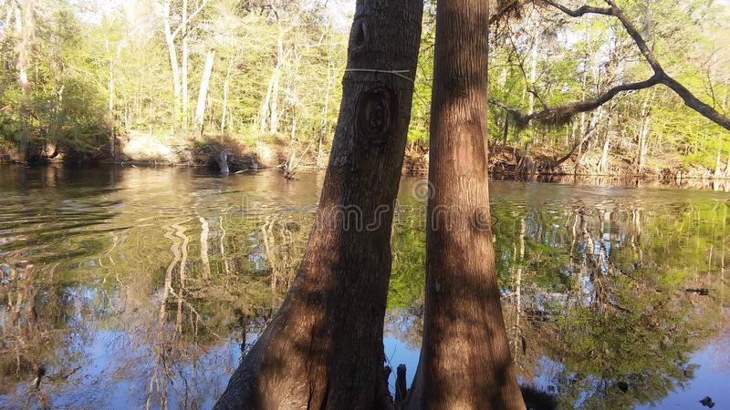 Сцена 3 реки стоковое фото