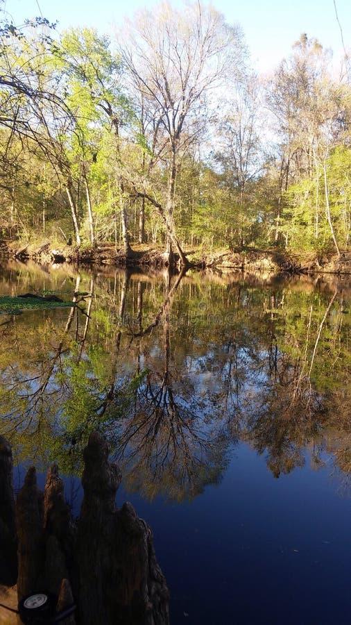 Сцена 7 реки стоковые фотографии rf