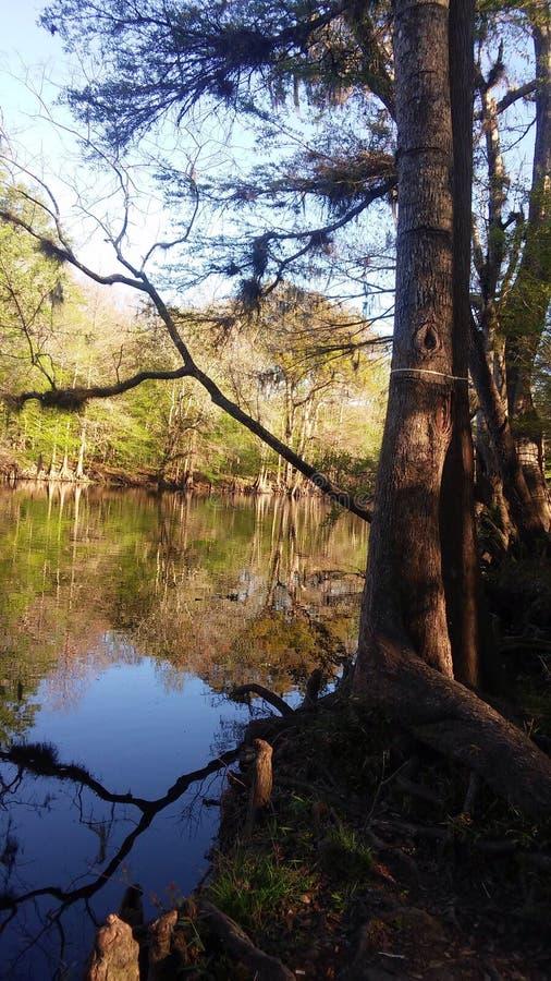Сцена 4 реки стоковые изображения rf