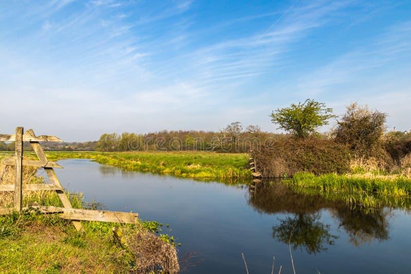 Сцена речного берега в луге в Essex стоковая фотография rf