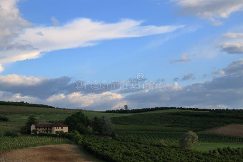 Сцена сельской местности перед штормом внутри может стоковое изображение rf