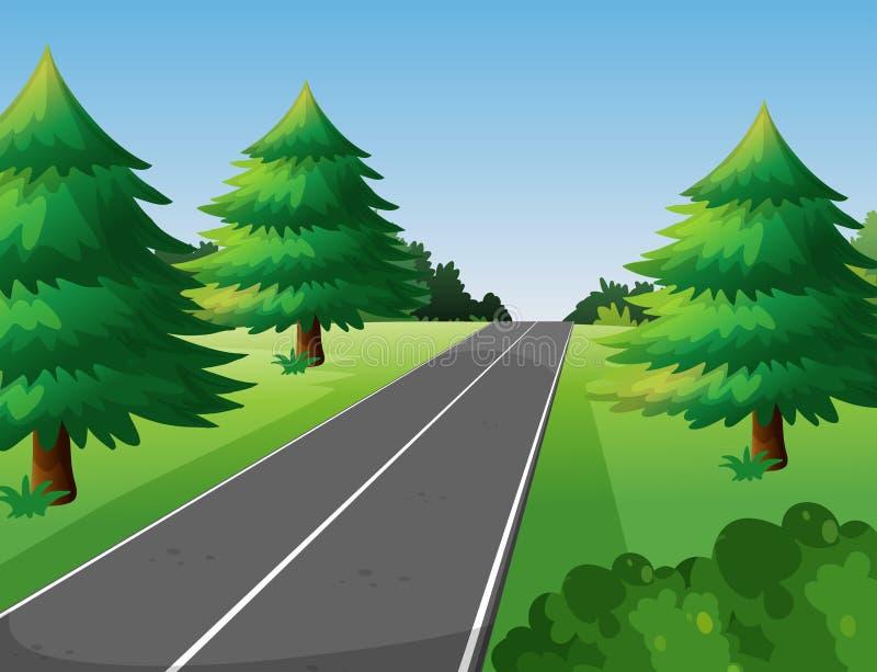 Сцена с соснами вдоль дороги иллюстрация вектора
