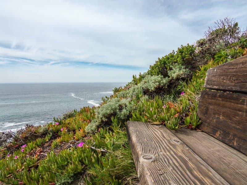 Сцена Тихоокеанского побережья от мечты стоковое изображение