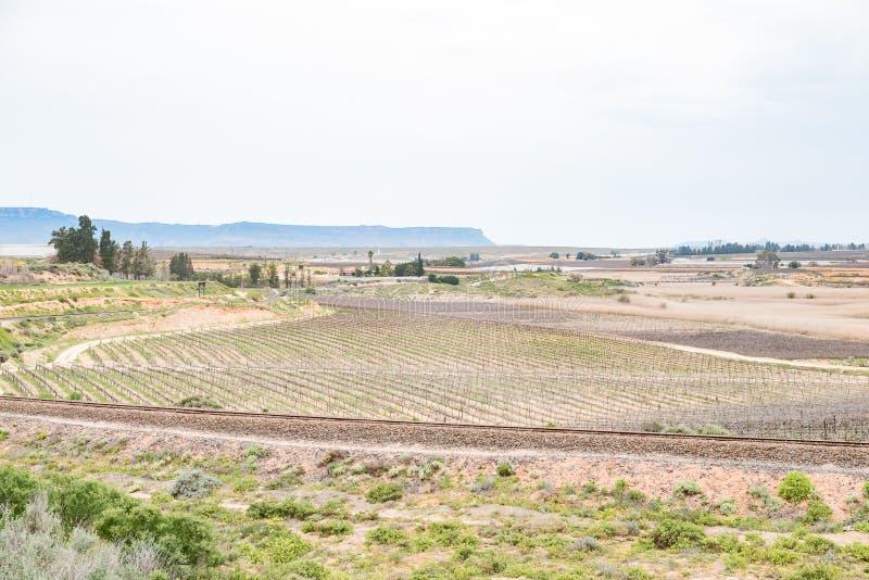 Сцена фермы около Vredendal стоковые изображения rf