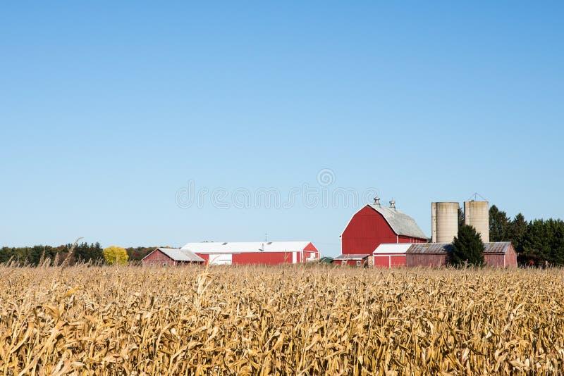 Сцена фермы семьи осенью стоковое фото