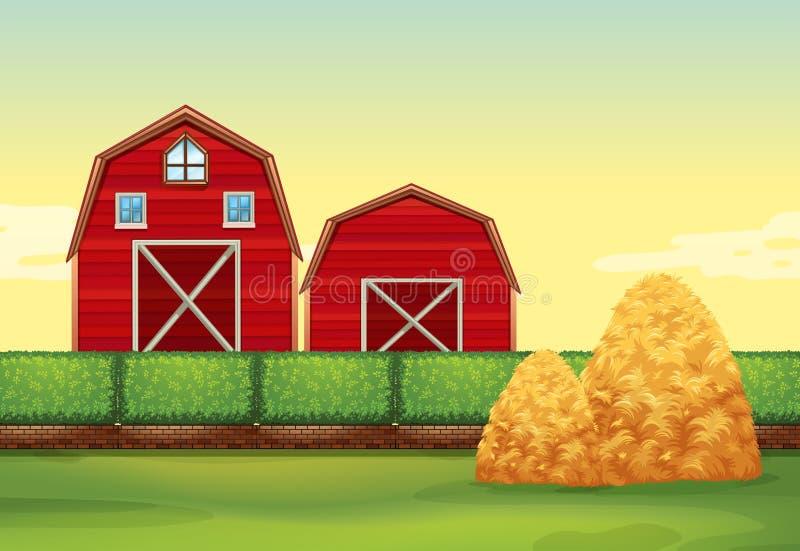 Сцена фермы с амбарами и стогами сена бесплатная иллюстрация