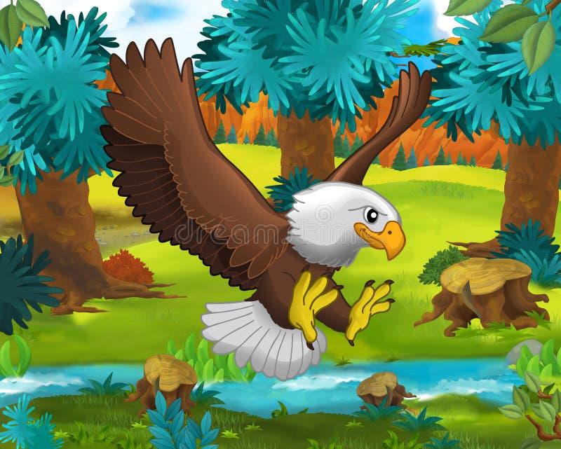 Сцена шаржа - одичалые животные Америки - орел - енот иллюстрация вектора