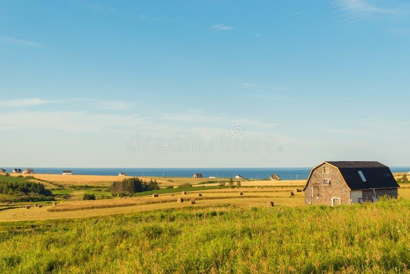 Сцена PEI сельская стоковые изображения rf