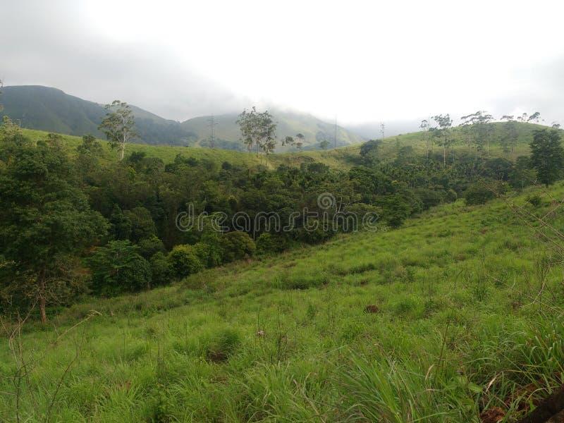 Сцены Кералы красивые с горами стоковые фото