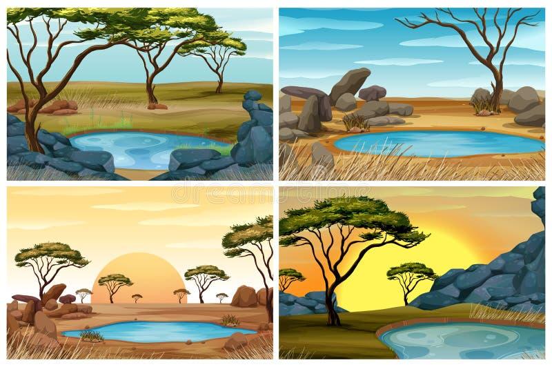 4 сцены поля саванны с waterhole иллюстрация вектора