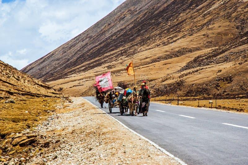 Сцен-паломники тибетского плато идут к Лхасе стоковые изображения