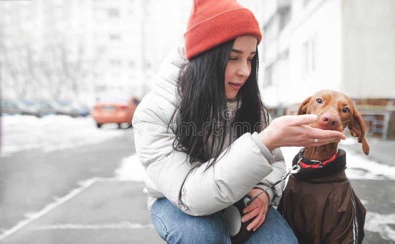 Счастливая девушка в шляпе и одеждах зимы сидя на улице и кормить ее собаку от предпосылки улицы стоковое изображение rf