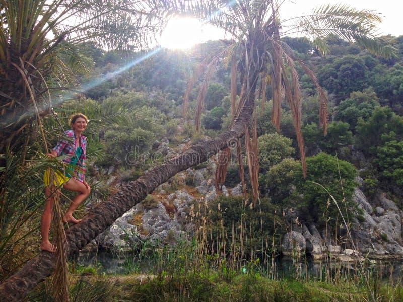 Счастливая девушка на пальме стоковое изображение rf
