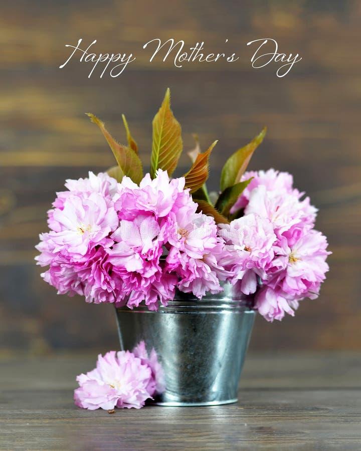 Счастливая карта дня матерей с вишневым цветом в ведре на деревянной предпосылке стоковая фотография